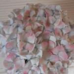 HYDRANGEA  WHITE ANTIC